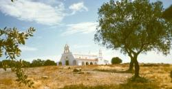 fotos de miguel gomez para hermandad de piedras albas 034.jpg