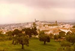 fotos de miguel gomez para hermandad de piedras albas 050.jpg