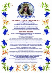 CARTEL NOVENARIO 2017